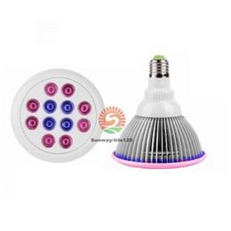 Wholesale Par38 Led 36w - Indoor LED Grow Lights Bulbs E27 PAR38 Dimmable 36W 54W 660nm Red 460nm Blue Flower Plant light Hydroponics System Lighting AC85-265V