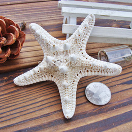 Wholesale Wedding Favors Sea Shells - Wholesale- 10pcs 4-7cm white natural Air Dried starfish sea star Beach Themed Wedding Table Decoration Christmas Party Favors sea shells