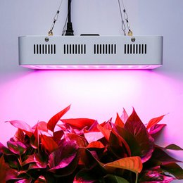 Wholesale Red House Plants - High Power 1200W 1500W Full Spectrum LED Grow Lights square double chip 1000W LED Grow Light for hydroponics plant growth white housing body
