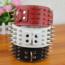 Wholesale Big Pit - (20 Pieces lot) 3inch Width Leather Strong Studded Sharp Spikes Large Big Dog Pet Pit bull Collar SM and Matched Lead Leashes