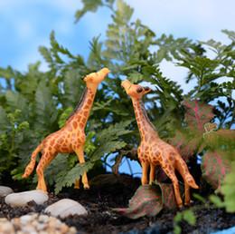 Wholesale Deer Giraffe - 8pcs Artificial mini Giraffe fairy garden miniatures deer mini gnomes moss terrariums resin crafts figurines for garden decoration