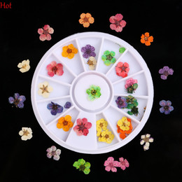 Wholesale Manicure Wheel - Wheel 36Pcs 12 Colors Dried Dry 3D Flower Tips Nail Art Decoration Design Nail Decal Manicure DIY Nail Art UV Acrylic Sticker LPP001262