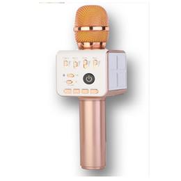 Argentina ZP-11 Bluetooth Wireless Karaoke portátil Micrófono móvil Mini Handheld Cellphone Speaker Macrófono portátil Happy Singing in the Outsid Suministro