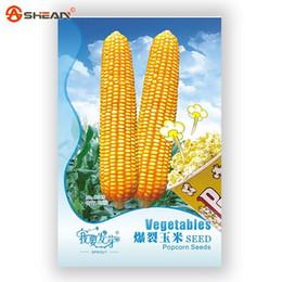 Попкорн онлайн-Исходная упаковка Семена кукурузы Бонсай Завод Попкорн Растительные семена-35шт