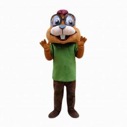 Wholesale Chipmunks Costumes Adult - chipmunk Mascot Costume Cartoon Character Adult Size Longteng high quality (TM)