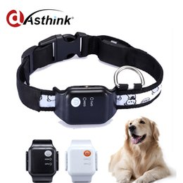Wholesale App Hand - water-resistant Dog Cat Animal Collar iOS Andriod APP for Mobile Device GPS SIM Card Pet Tracker Locator