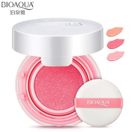 Wholesale Air Cosmetics - Wholesale- BIOAQUA Air Cushion Rosy Blusher Bronzer Makeup Blush Palette Mineralize Powder Sleek Maquiagem Nude Make Up Brand Cosmetics