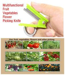 2019 escolhendo uvas Novo anel de cisalhamento colhendo legumes e frutas colhendo uvas cereja pomar ferramenta de corte conveniente ferramentas de jardinagem faca de colheita escolhendo uvas barato