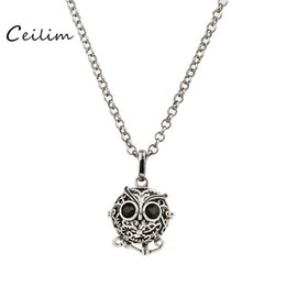 Wholesale Pictures For Lockets - Wholesale Jewelry Pendants Necklaces Fashion Crystal Can open Owl Sweater Chain Long perfume diffuser or picture locket Charm Gift for Women