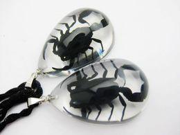 Wholesale Asian Christmas Ornaments - free shipping 12 pcs yqtdmy New scorpion king lucid specimen pendants style creative ornaments gift