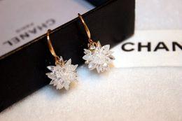Wholesale Titanium Gold Plated Earrings - hot selling fashion earring jewelry titanium steel hypoallergen Asymmetrical fashion Ice flower clip 18k rose gold earrings
