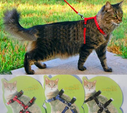 Wholesale Harness Pull - Dog Cat Harness Lead Collar Pet Walking Training Anti Pull Dog Leash Leader