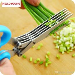 Werkzeuge für zu hause online-D067 Edelstahl 5-Klingen-Herb Schere Reiniger Blades Küchen Werkzeug Wohn Obst Gemüse Werkzeuge Farbe zufällig gesendet