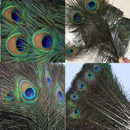 Wholesale Eco Fiber - Elegant decorative materials decorative Feather Beautiful Feathers about 25 to 30 cm Novelty Items free shipping 4148