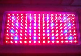Wholesale Grow Products - Best selling product 1000W LED Grow Light full spectrum