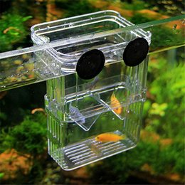 Wholesale Transparent Acrylic Boxes - 2pcs lot Acrylic Fish Breeding Isolation Box Fish Tank Aquarium Incubator juvenile Fish Hatching Aquarium Accessory transparent isolation