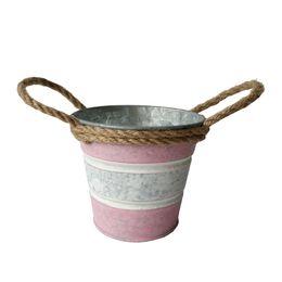 Wholesale Wholesale Powder Coating Supplies - D10XH9CM pink color Metal garden pot round Hemp rope planter Meat plant pot iron flower tub for Garden Supplies