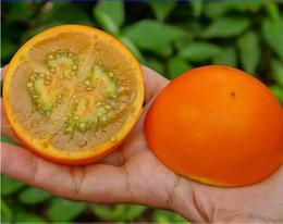 2019 semi solanum Semi di frutta Quito Orange Naranjilla Lulo Solanum Quitoense, confezione professionale, 100 semi / confezione, commestibile E3342 semi solanum economici