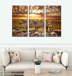 Wholesale Wall Canvas African - 3pcs set Unframed The African Prairie Zebra HD Print On Canvas Wall Art Painting Art Picture For Home Decor