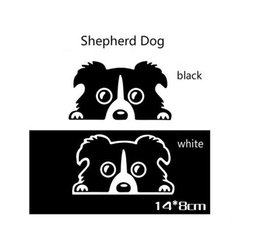 Wholesale dog bumpers - Pet Dog Border Collie sticker Dog Border Collie reflective sticker self adhesive vinyl wallpaper bumper stickers Wholesale price car sticker