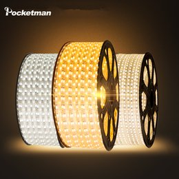 Wholesale Led Strip 6m - Wholesale-LED strip Waterproof SMD 5050 AC220V 1M 2M 3M 5M 6M 8M 9M 10M 15M 25M led stripe 5050 220V Light With EU Power Plug