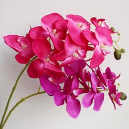 orquídeas artificiais únicas flores Desconto One Piece Orquídea Única Orquídea Borboleta Caule 80 cm Flores Artificiais Mini Orquídeas Phalaenopsis 7 Cores para Peça Central Do Casamento