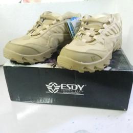 Stivali desertici all'aperto Gli stivali tattici d'assalto dell'esercito degli Stati Uniti indossano scarpe da trekking casual da viaggio da uomo da scarpe da trekking scarpe basse fornitori