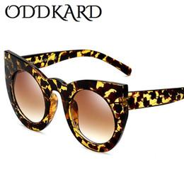 d6cd7c9c5f484 ODDKARD Óculos de sol de moda quente para homens e mulheres Design de marca  popular Óculos de sol com óculos de gato Oculos de sol UV400 óculos de sol  ...
