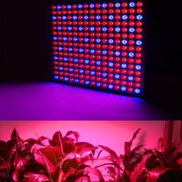 2019 piante da giardino appese LED Grow Grow 45W LED Pianta Grow Light luce appesa per impianto interno per serra giardino e idroponica pianta a spettro completo coltiva la luce piante da giardino appese economici