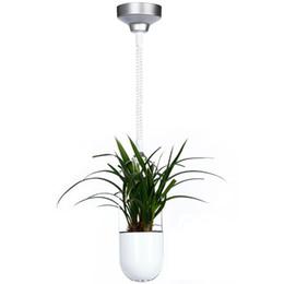 Wholesale New Lamp Decorative - 2017 year new silver LED plant health light decorative lights led luxury pendant lamp for hotel restaurant light
