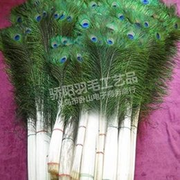 Wholesale Natural Environmental - Factory Direct 80 90CM Featured Natural Peacock Hair Professional Production Environmental Non Toxic Not Easy To Fade 1 5jy R