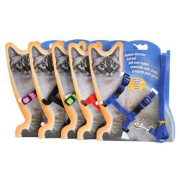 Hebillas de porcelana online-Collares de gato delgados y coloridos Colorido Material de nylon práctico Cables de gatito con hebilla de metal Uso de mascotas Correas de deslizamiento Suministros 2 45zj Z