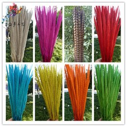 Wholesale chicken feathers - Natural Dyeing Feather Chicken Tail Pheasant Plume Beijing Opera Stage Silver Color Feathers Hanging Arts And Crafts 1 7js jj