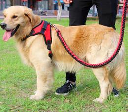 Cinturones de cadena grandes online-Cinturones de seguridad 1 juego Big Pet Correas y collar para perros dedicados Cuerdas trenzadas Perros Collares Correas Cadena Fuerte para perros grandes Animales