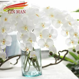 Rabatt Seide Orchidee Dekorationen 2018 Seide Orchidee