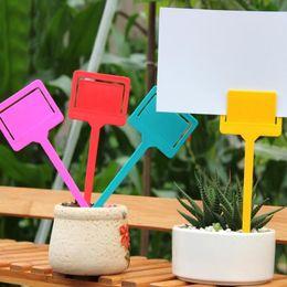 Plastik T-tipi Bahçe Bahçe Etiket Bitki Çiçek Kreş Etiket Etiket Işaretleyici Kalın 6 Renk Ücretsiz Kargo ZA6225 supplier nursery tags nereden anaokulu etiketleri tedarikçiler