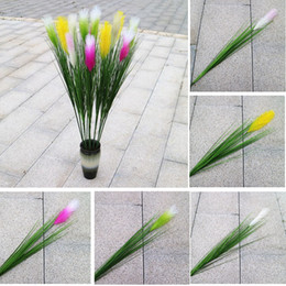Wholesale Office Displays - Artificial Reed Grass setaria flowers single reed grass green plant Home Wedding Party Office Favor Decoration Plants GGA467 50PCS