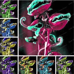 Mosca plantas on-line-Venus Fly Trap Planta Carnívora Semente Dionaea Muscipula Cordyceps Flycatcher Semillas De Flores Raras Para Casa Jardim 50 Pcs