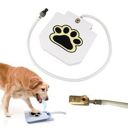 Fontana d'acqua esterna per cani online-Fontana per animali domestici con acqua potabile Versione aggiornata Step On Doggie Fountain Outdoor Puppy wtaer feeder AAA813