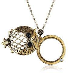 антикварные золотые подвески Скидка 2018 Новый Дизайн Античная Золотая Цепочка Ожерелье Лупа Ожерелье Сова Ожерелье Ретро Бижутерия Для Подарка Бесплатно DHL D548S