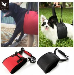 Wholesale Sling Harness - TAILUP Portable Dog Lift Support Auxiliary Belt Rehabilitation Harness Assist Sling For Elderly and Sick Pet S- XL Top Quality