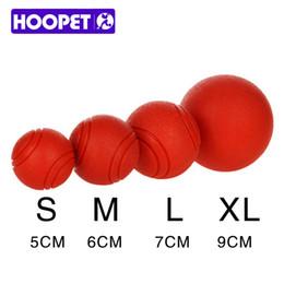2019 frisbee di plastica animale domestico HOOPET Cane Giocattolo Palla di gomma Morso resistente ai cani Cucciolo Teddy Pitbull Pet Supplies