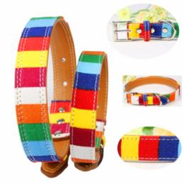 Collari di cani arcobaleno online-Colletto per cane in pelle Designer perro Colletto Taglia XS M L Pelle Pianura per colletto piccolo Colorato arcobaleno