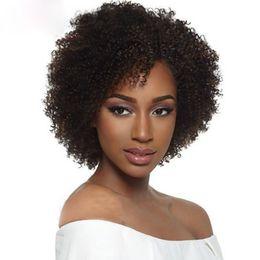 Kurze afro-menschenhaarperücken online-heiße reizend Frauen brasilianisches Haar kurze Afro verworrene lockige Perücke Simulation Menschenhaar kurze lockige Perücke auf Lager