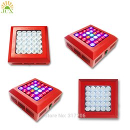 Wholesale Led Epileds Chip - Plant growing lamp XR series 75w Full Spectrum Led Grow Light 25pcs Epileds 3w led chip growing for Hydroponics greenhouse