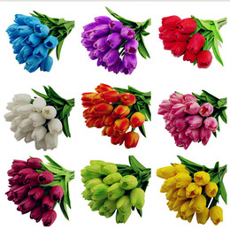 Wholesale beautiful bulbs - 50 Pcs Tulip Seed Tulip Flower Beautiful Tulipanes Flower Plant For Garden Plants(Not Tulip Bulbs ) Flower Symbolizes Love
