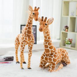Argentina A estrenar 80 cm simulación de peluche jirafa juguetes muñecos de peluche lindo suave muñeca de jirafa regalo de cumpleaños de alta calidad niños juguete cheap soft toys brand Suministro