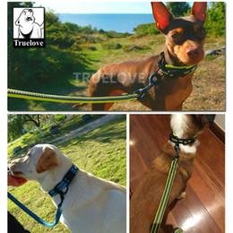 Collares de nylon reflectantes para perros online-Perro Ecológico Fácil en Pet collar y una correa de nylon Conjunto Adjustabele el collar del entrenamiento del perro del correo reflectante alimentos para mascotas Dropshipping
