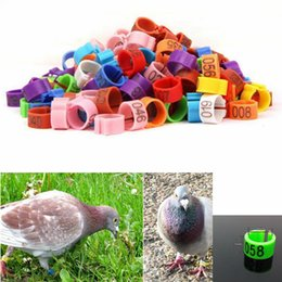 Wholesale pet birds parrots - 8*7mm Birds Foot Ring Clip On Leg Band Rings With Numbers Chickens Pigeon Bayonet Marking Ring Parrot Clip Rings Pet Supplies AAA261