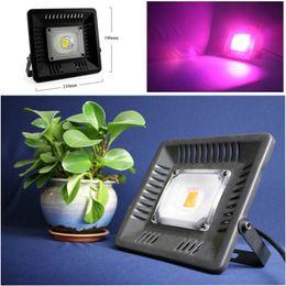 светодиодные наборы для сада Скидка LED свет завода 50 Вт полный спектр водонепроницаемый LED светать IP67 COB растут лампы для наружного освещения растений
